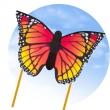Butterfly Kite Monarch L