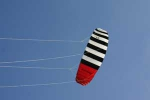 ZEBRA Z1 1.5 kite only, Angebot